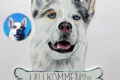 holzschild-cheyenne-husky