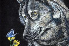 wolf-02a