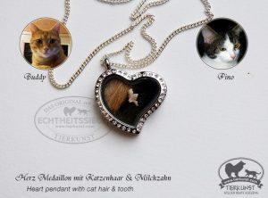 Herz mit Katzenhaar und Zahn