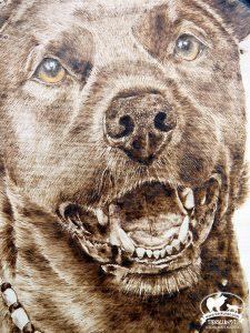 Brandmalerei Hundeportrait