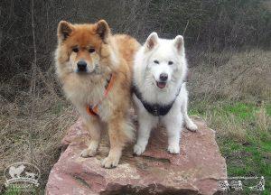 Tala und Alwin